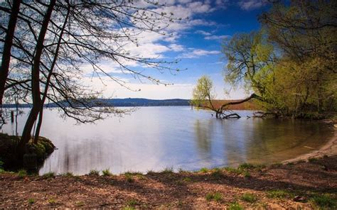 Berlin's best lakes for sunbathing and wild swimming