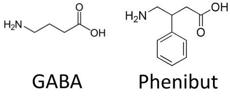 Phenibut vs Gaba: The Benefits and Side Effects of Each
