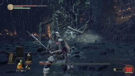 Curse-Rotted Greatwood Boss   Dark Souls 3